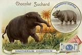 Deinotherium Giganteum and hippopotamus