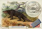 Megalosaurus and otter