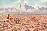 Mystic Maze of the Mojave Indians, near Needles, California
