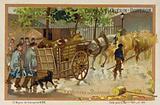 Drover's wagon