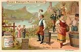 Wine: Rhine wine