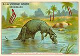 Hadrosaurus Mirabilis