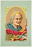 Voltaire, French writer and philosopher