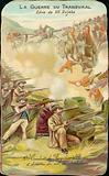 Battle of Ladysmith, 30 October 1899