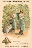 Chasselas de Fontainebleau grapes