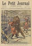 A lion tamer injured by a lion