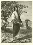 """""""She Gleaned in the field"""", Ruth, II, 3"""