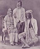 The Burmese Hairy Family