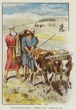 Old Testament Stories, Elisha's Call, 1 Kings