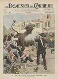 Una corrida di tori fatta sul serio in un paesello della provincia di Novara