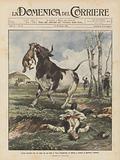 Lotta mortale fra un cane ed un toro a Vecs (Ungheria) in difesa e contro il padrone comune