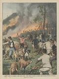 I grandi incendi di montagna a causa della siccita, vaste distese di boschi in fiamme sopra …