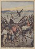 Fiera burrasca nello stretto di Messina che la arenare un enorme squalo ucciso poi a colpi di remo …