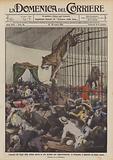 Leonessa che fugge dalla gabbia aperta in alto durante una rappresentazione, in Borgogna …