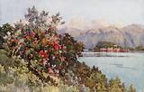 Roses, Villa Carlotta, Lago di Como