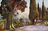 Cypress Avenue, Villa del Pizzo, Lago di Como