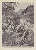 La Fine Del Brigantaggio Nel Circondario Di Nuoro (Sardegna), Il Sanguinoso Conflitto Nella Foresta Di Morgogliai