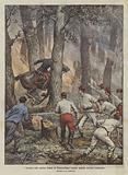 L'incendio della storica foresta di Fontainebleau, tragico episodio durante l'estinzione