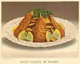 Fried Fillets of Plaice