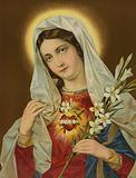 Sacred Heart of the Virgin Mary