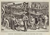 Sleeping Arrangements in Shiloh Shelter, New York