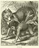 The Wolf-Child
