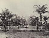 Palms and Fountain, Botanical Gardens, Brisbane