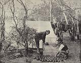 An Emu-Eggers' Camp