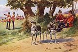 The Pet Antelopes of the Royal Warwickshire Regiment