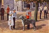 The Pet Wolfhound of the Irish Guards at the Tower of London