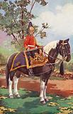 Drum Horse of the 7th Dragoon Guards