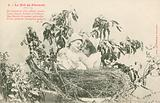 Pierrot and Pierrette in a nest