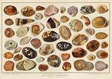 British Pebbles