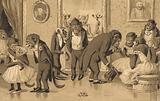 Evening party of baboons