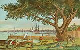 The Treaty Elm on the Delaware River, Philadelphia