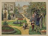 Garden in town