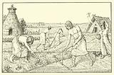 Neolithic farmers in Germany