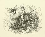 Illustration for The History of Sir Thomas Thumb