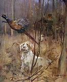 Pheasant shooting old style