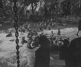 Invasion of Cape Gloucester, Marines and Coast Guardsmen Prepare a Causeway for Landing