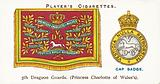 Drum Banners and Cap Badges, 5th Dragoon Guards, Princess Charlotte of Wales's
