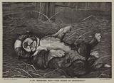 A St Bernard pup: the sleep of innocence