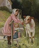A tempting morsel: a girl feeding a carrot to a calf