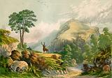 Illustration for Wilson's Address to a Wild Deer