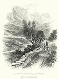 Telford's Native Valley, Eskdale