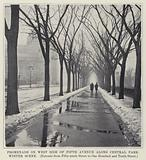 Promenade on West Side of Fifth Avenue along Central Park, Winter Scene