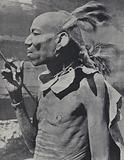 Turkana man wearing the traditional headdress made from the hair of his ancestors bound to his own with clay, Kenya