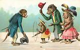 Anthopomorphic monkeys