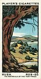Rush, Ros-Eo, The Peninsula Of The Yew-Trees