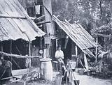 Australian Bushman's Home